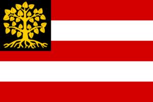 Vlag Den Bosch