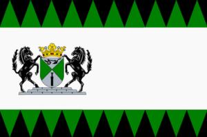 Vlag Emmen